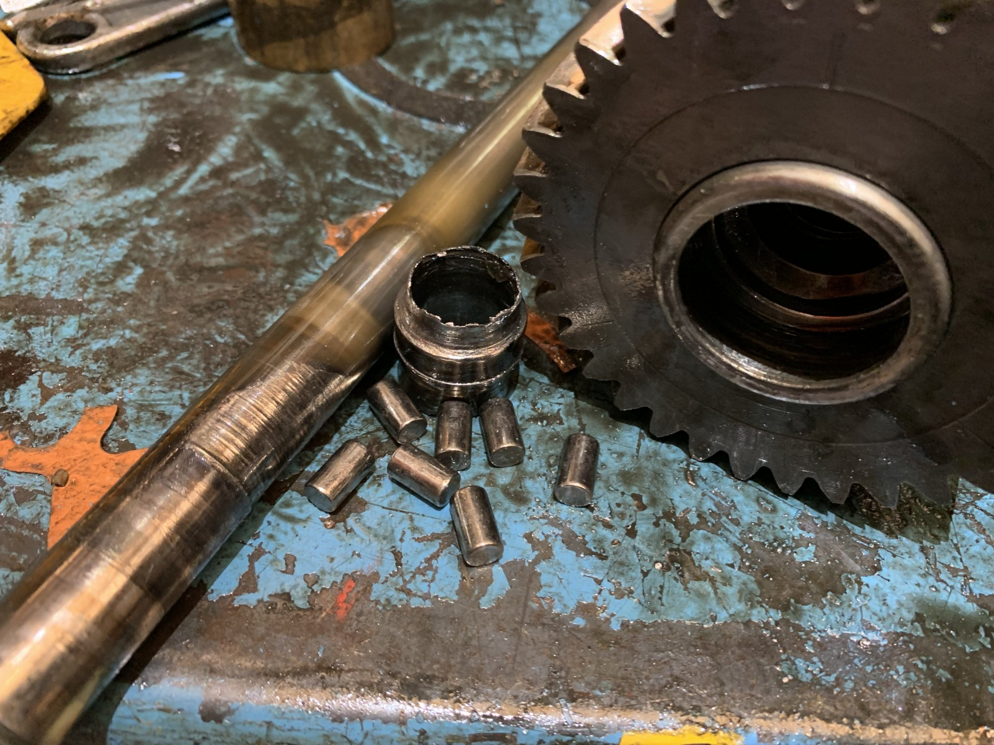091.thumb.JPG.f559ccb1baec419def8b7ab01216cda2.JPG