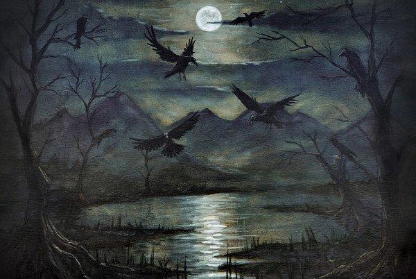 Ravens reveal past ages